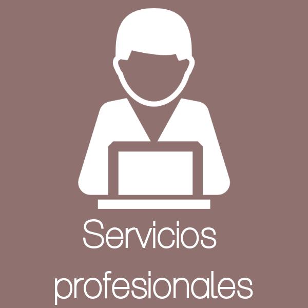 servicios profesionales estepona