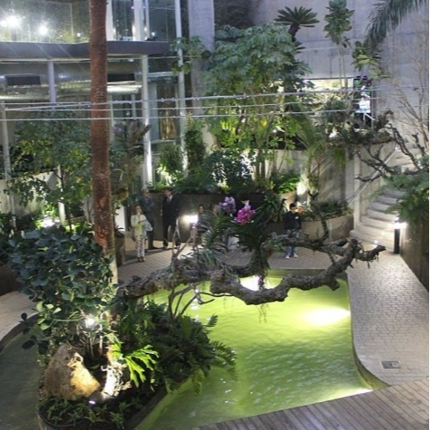jardin botanico orquidario estepona
