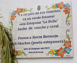 Poema a Sierra Bermeja