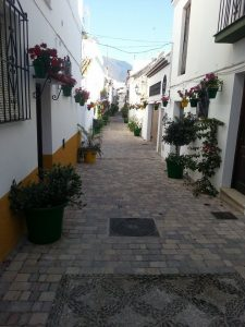 calle 5