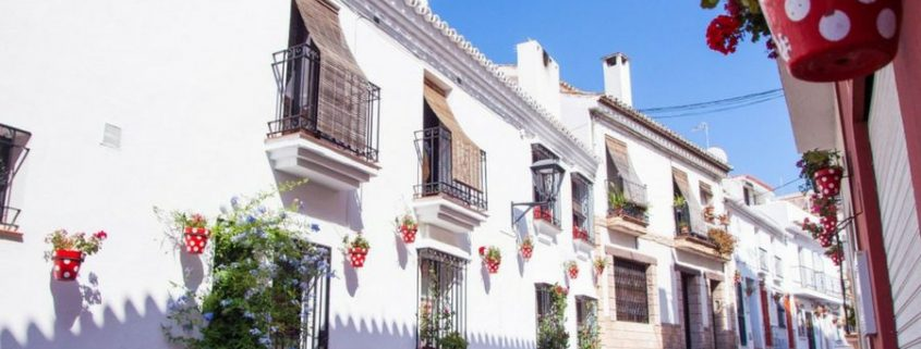 Activities in the second week of August in Estepona