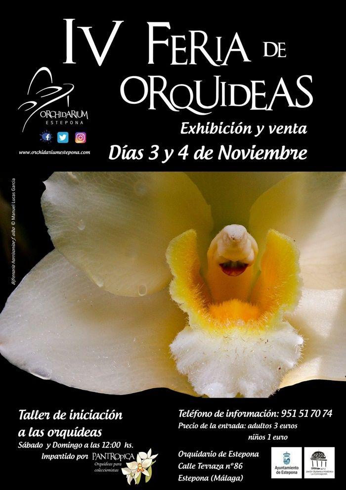 IV Feria de Orquídeas en Estepona 01