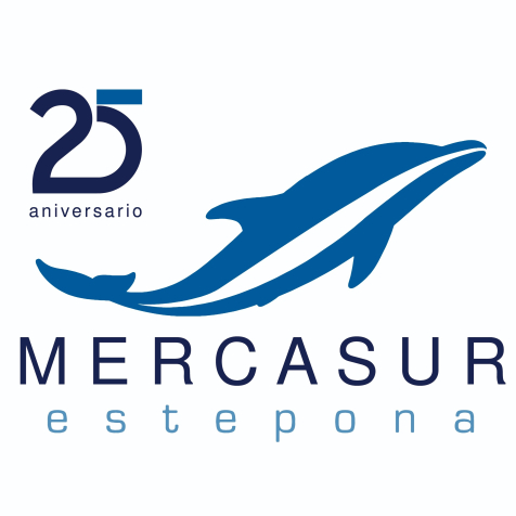mercasurgaleria3 (1)