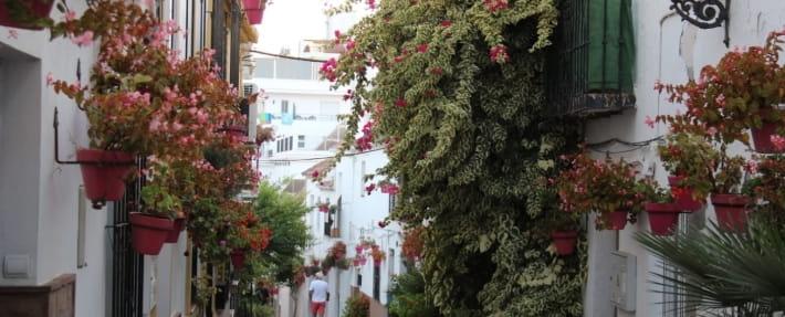Turismo en Estepona_ Ruta Urbana de 4 horas
